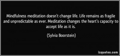 quote-mindfulness-meditation-doesn-t-change-life-life-remains-as-fragile-and-unpredictable-as-ever-sylvia-boorstein-297671